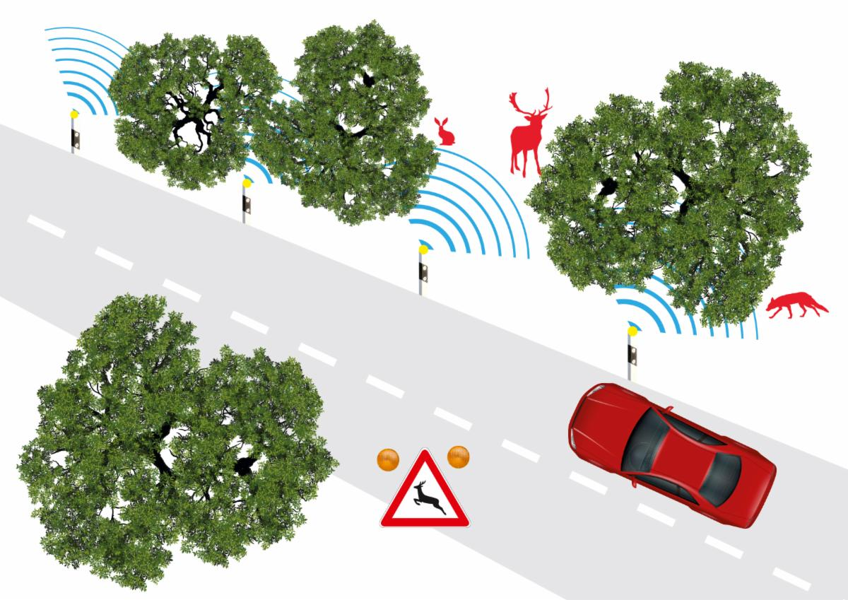 Salus's road-radar to detect wild animals